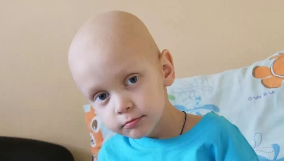 Рак излечим доказал эксперимент учёных