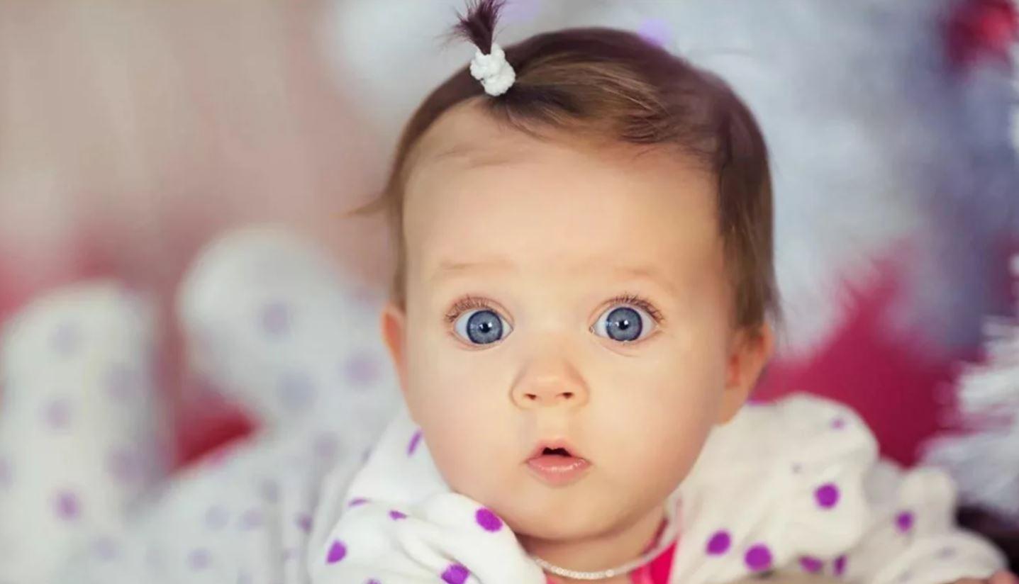 вопрос дочери к маме откуда берутся дети